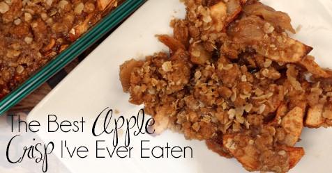 The Best Apple Crisp I've Ever Eaten | Easy Apple Crisp | Double Crust Apple Crisp | Apple Picking | Homemade Apple Crisp | Cinnamon Apple Crisp