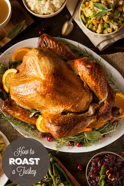 http://www.simplystacie.net/2015/10/how-to-roast-a-turkey/