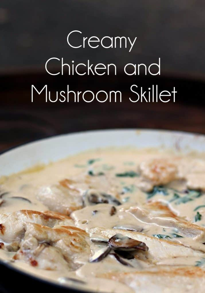 Creamy Skillet Chicken and Mushrooms | One Pot Recipe | Skillet Dinner | 30 Minute Meals | Chicken and Noodles