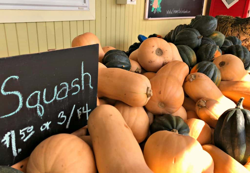 Buying fresh squash for making Savory Butternut Squash Soup