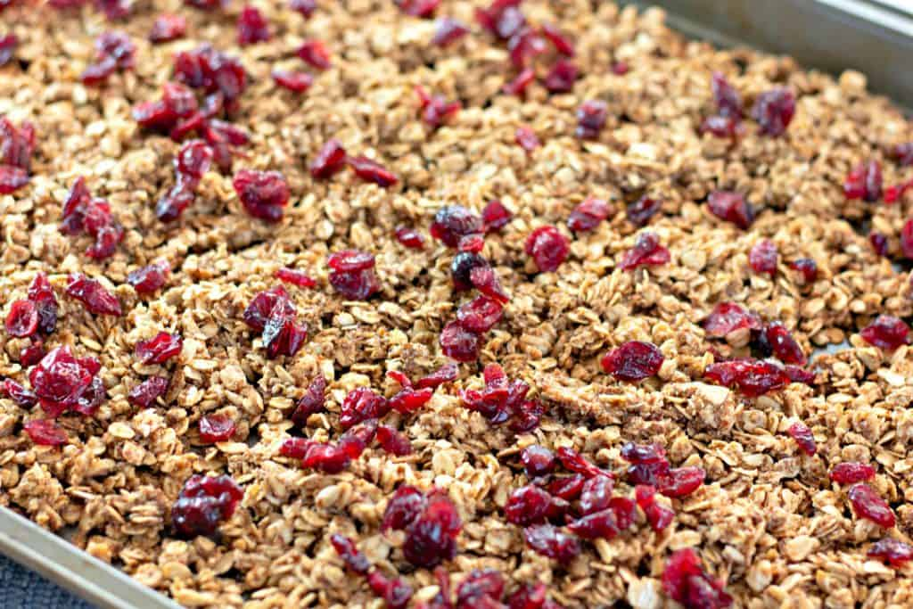 fresh granola topped with dried cranberries