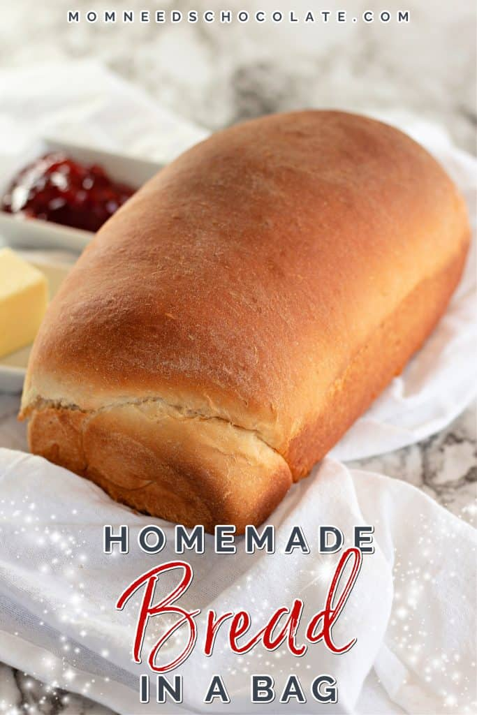 The Best Homemade Bread in a Bag on Pinterest.